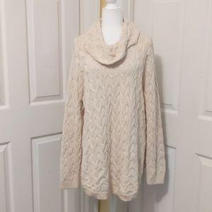 Jeanne Pierre sweater size 2X
